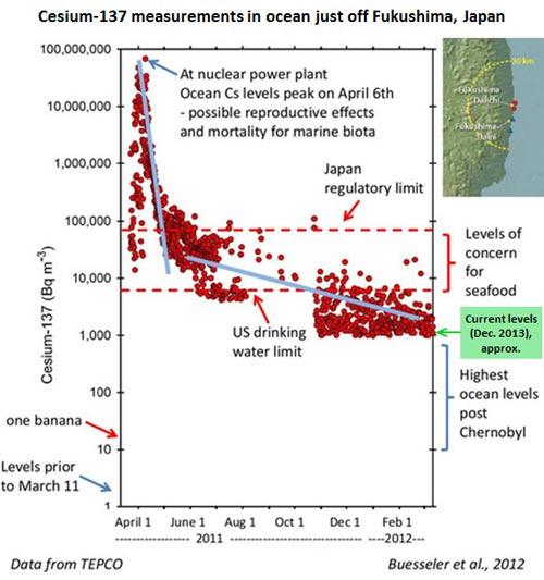 Fukushima Radiation Cesium-137 measurements in ocean