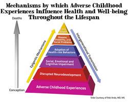 ACEs-pyramid